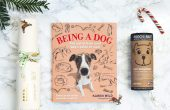 12 days of giftmas - gift guide for pets